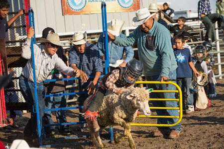 Sheep rider, Teagan Calf Boss Ribs (6) competes in mutton busting.  Riders are timed, the objective is the stay on the sheep.